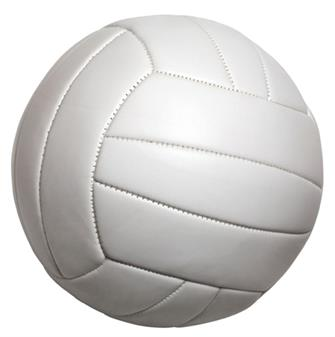Save the Date - Annual Adult Volleyball Tournament
